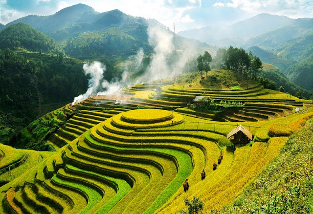 Top 5 sites of ripe rice hunting can't be missed at Mu Cang Chai 2
