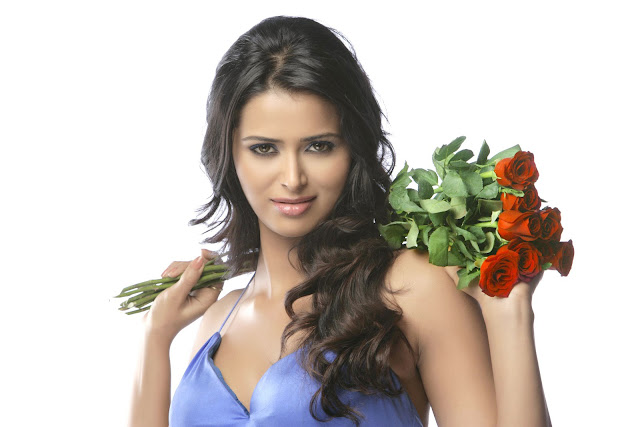 Hot Photos Meenakshi Dixit