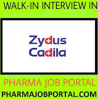 Zydus Walk In Interview for Multiple Positions at 1 September