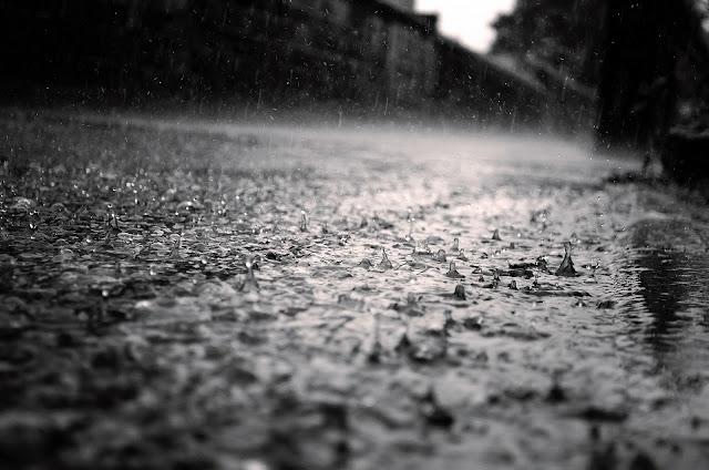 metamora herald rain