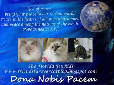 http://friendsfurevercatblog.blogspot.com/2015/11/dona-nobis-pacem-blogblast-for-peace.html