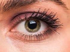 Foto de un ojo humano, sentido de la vista