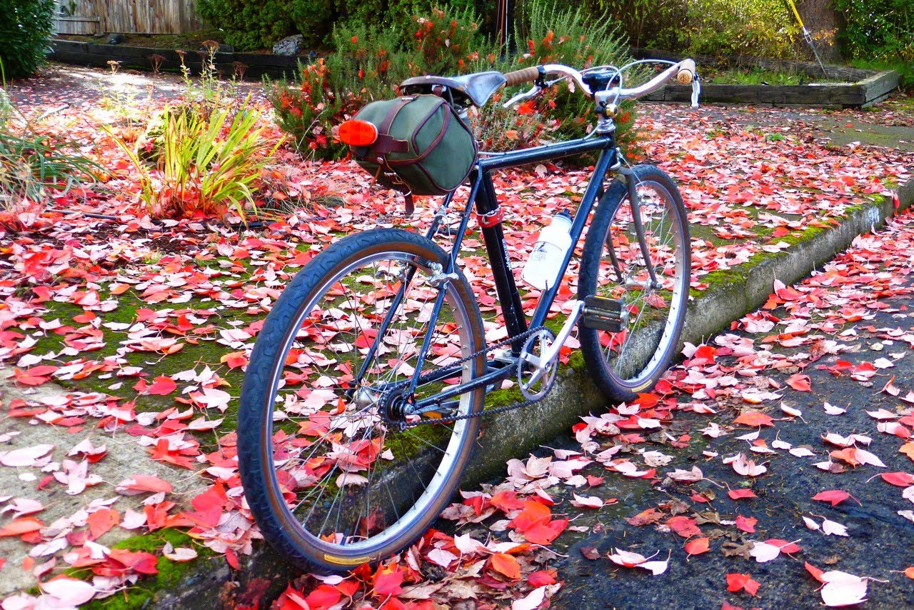 bicycle, Eugene, oregon, fall, autumn, red maple leaves, canvas saddle bag, ugly city bike