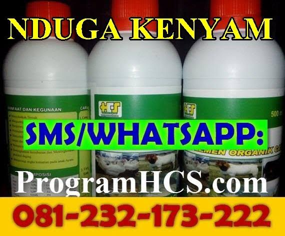 Jual SOC HCS Nduga Kenyam