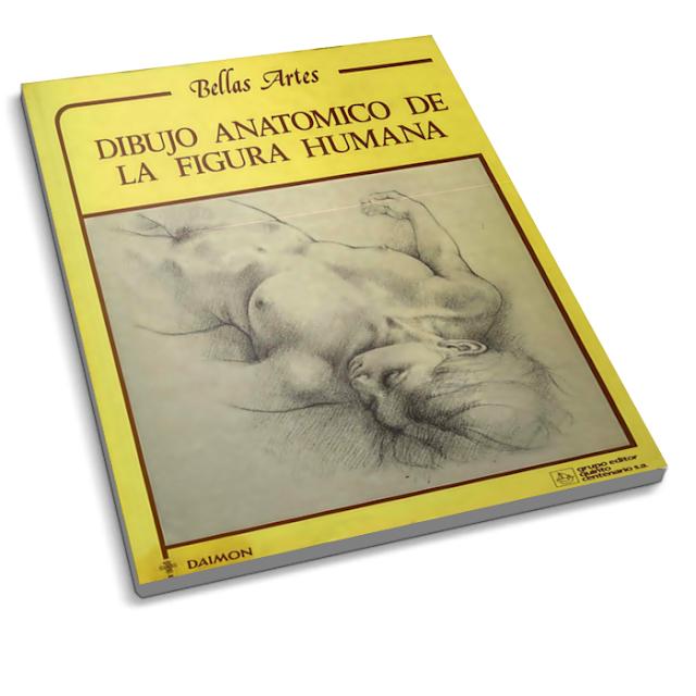 Desenho anatômico da figura humana