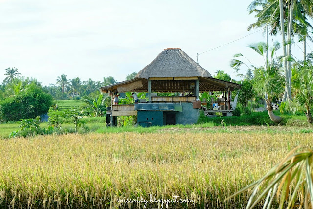 recommended cafe in ubud bali