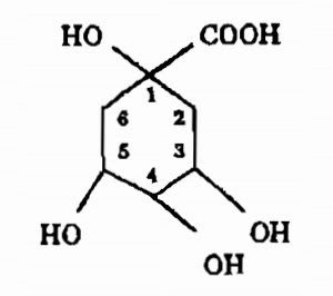 Thành phần hóa học từ vỏ cây Canhkina - Cinchona ledgeriana - Nguyên liệu làm thuốc Chữa Cảm Sốt