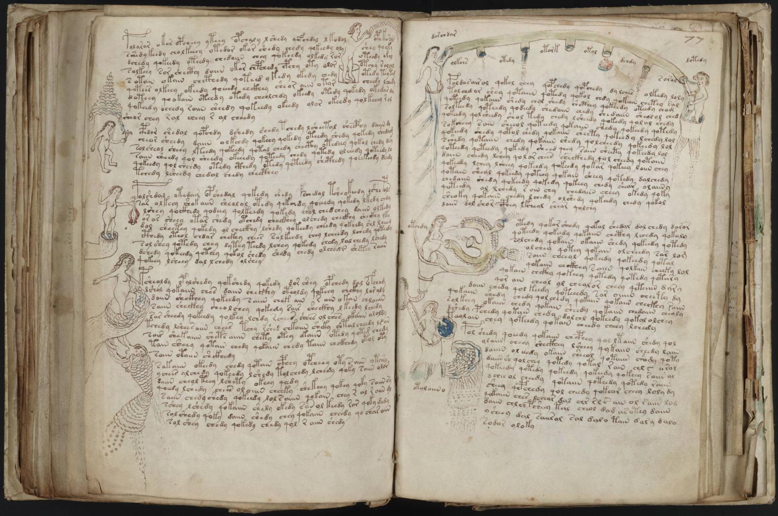 manuscrito213