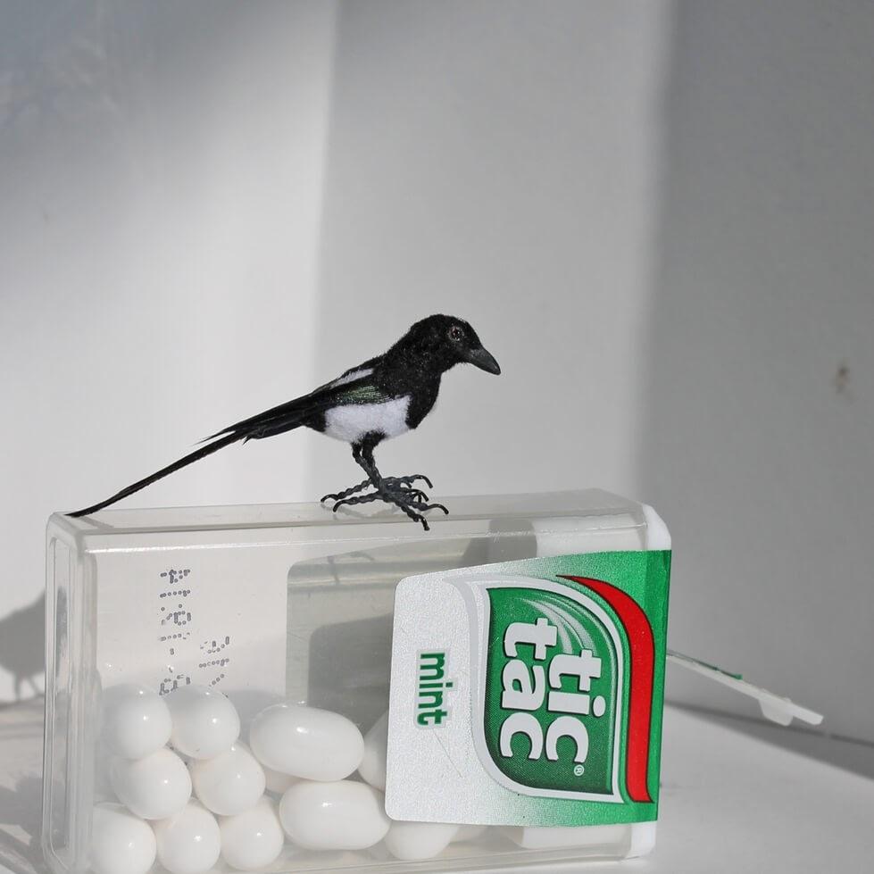 11-Miniature-Magpie-Katie-Doka-Hand-Sculpted-Dollhouse-Miniature-Animals-www-designstack-co