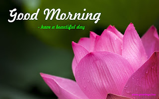 lotus greetings good morning message