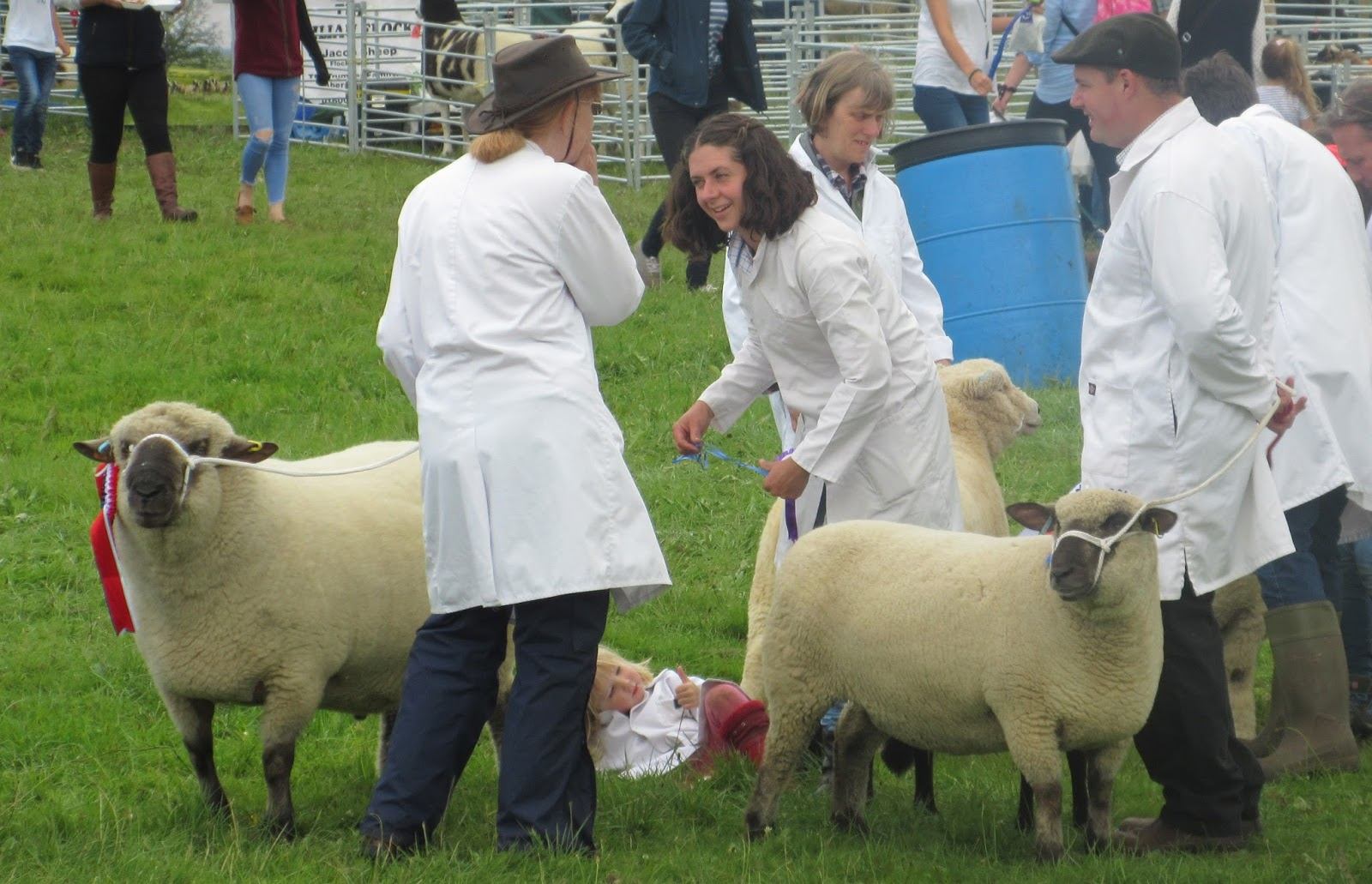 Summer in wales and the chepstow show eccentric england summer in wales and the chepstow show negle Choice Image