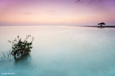 عشرة نصائح سريعة لتصوير المناظر الطبيعية