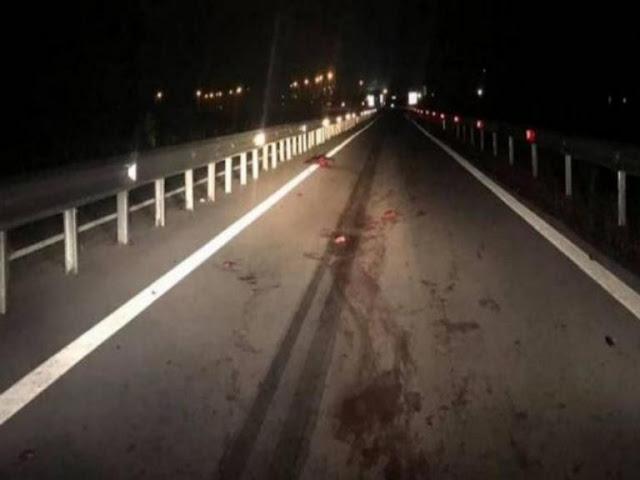 Άγιο είχε οδηγός που συγκρούστηκε με 5 αγριογούρουνα στην εθνική οδό