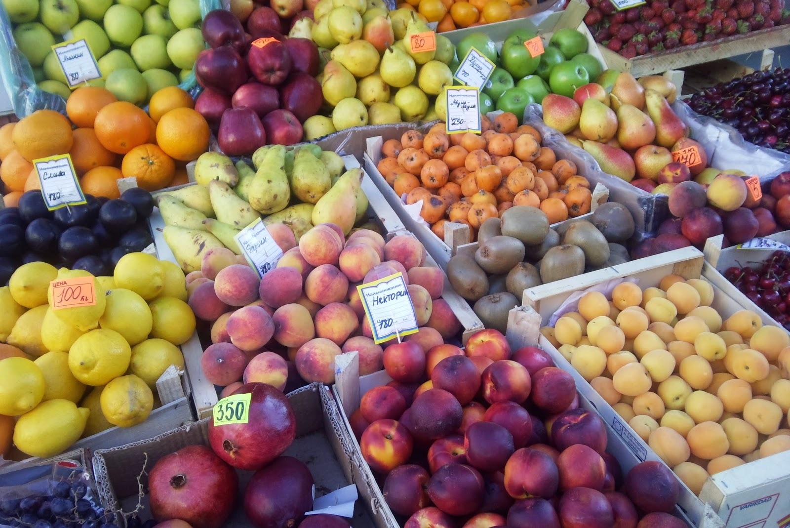 Feed your family well on a budget GreenGrocers
