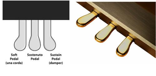 pedal roland rp-401r