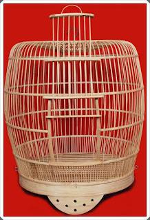 gambar sangkar burung minimalis terbaru