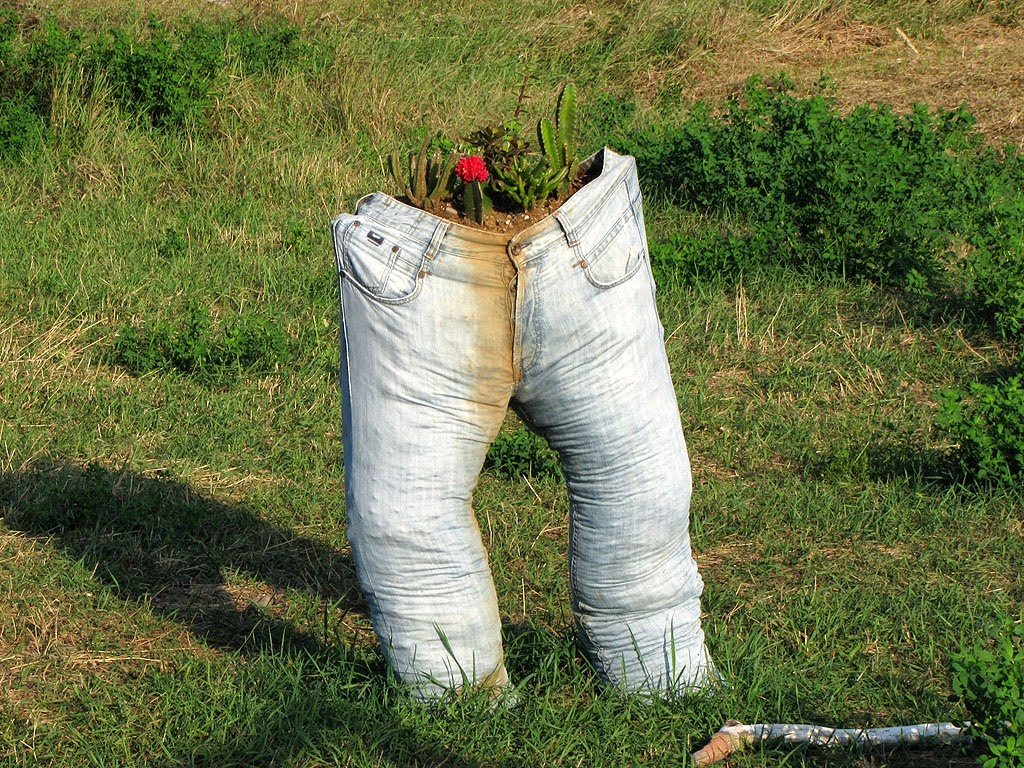 Jeans planter, urban vegetable gardens, via Goito, Livorno