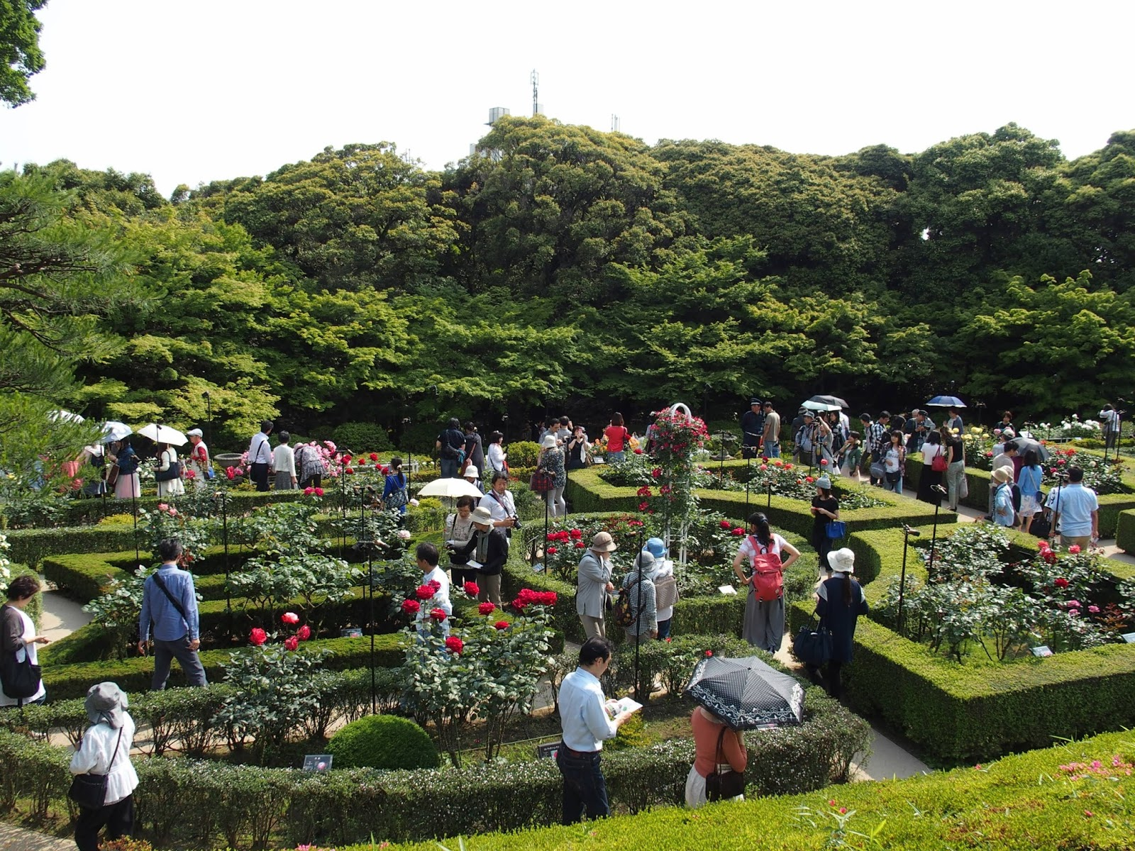 Attractive Kyu Furukawa Gardens Is A Beautiful Park Located In Kita, Tokyo, Near  Nishigahara Station. The Centerpiece Of The Park Is Its Western Style  Residence, ...