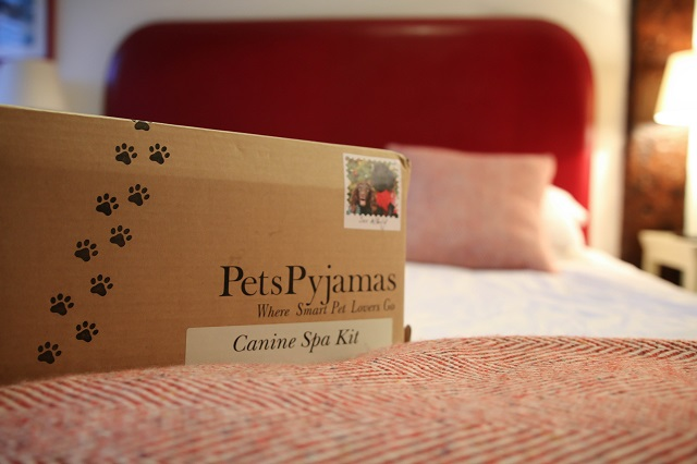 canine spa kit