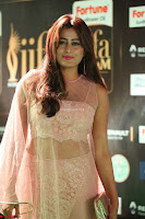 Nidhi Subbaiah Glamorous Pics in Transparent Peachy Gown at IIFA Utsavam Awards 2017  HD Exclusive Pics 48.JPG