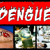 இலங்கையில் டெங்கு - 90,000 நோயாளிகள், 269 பேர் மரணம்..!