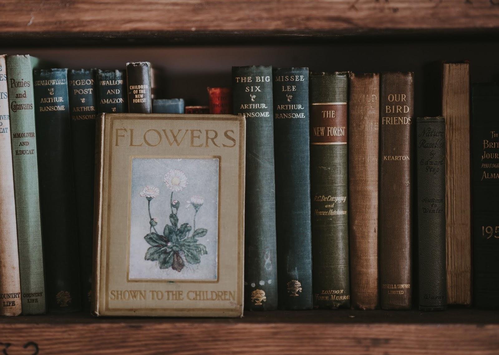 Livros que falam sobre TDI - Transtorno Dissociativo de Identidade