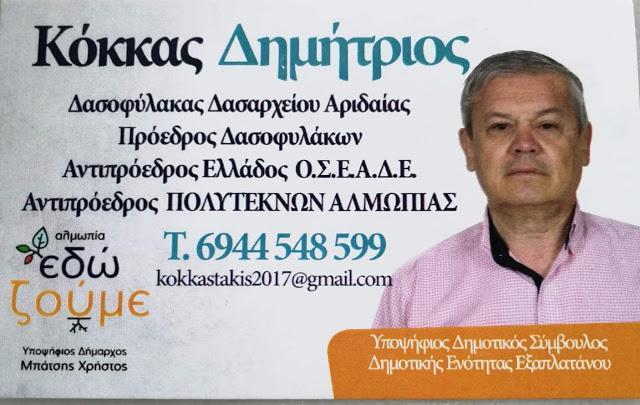 b85ec4d58312 Aridaia365  Ο Δημήτρης Κόκκας υποψήφιος δημοτικός σύμβουλος με τον ...
