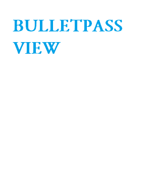BulletsPassView ~ NKEMSOFTWARE DOWNLOAD