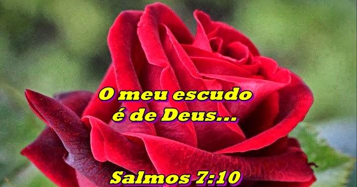 Na Vida Tudo Tem Um Sentido Resposta De Deus Pra Ti: **Na Vida Tudo Tem Um Sentido!**: Deus Entende Você Melhor