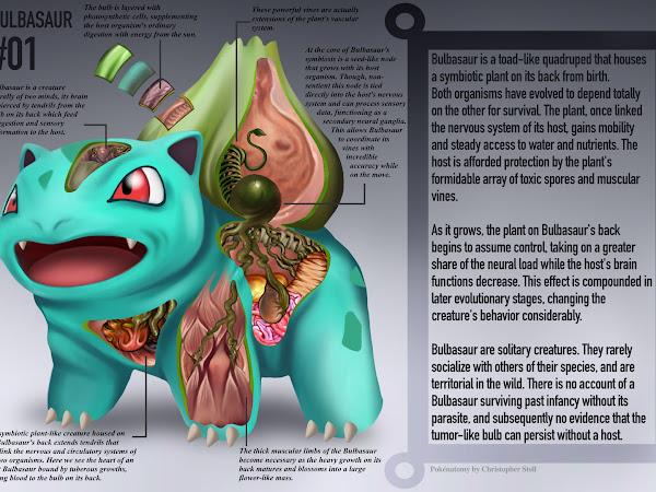 PokéNatomy, livro não-oficial de ilustrações de anatomia Pokémon, por Christopher Stoll
