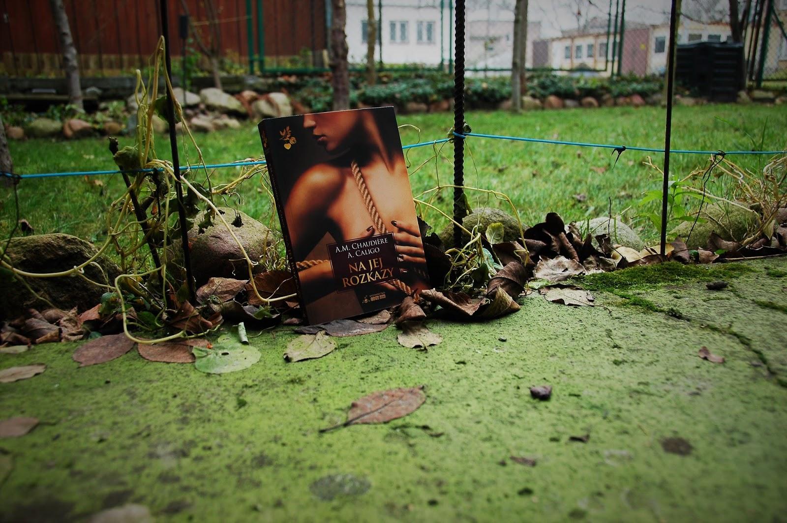 lesbijska książka erotyczna