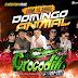 Crocodilo Prime No Baile Do Presidente Na Via Show 31-05-2018 - Dj -Patrese-Cd Ao Vivo-Baixar  Grátis