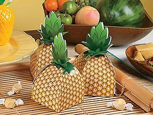 http://www.orientaltrading.com/party-supplies/party-favors/party-bags-and-containers/luau-a1-551313+1297.fltr