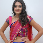 Nikitha Narayan Latest Hot Photos In Half Saree