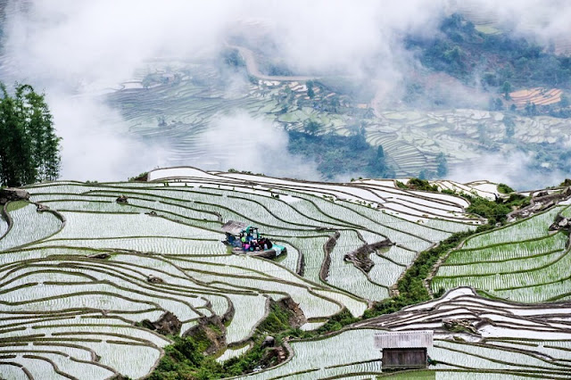 Travel Guide For A Perfect Trip To Mu Cang Chai, Vietnam 4