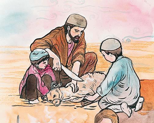 Pengertian Qurban Secara Lengkap dengan Penjelasannya