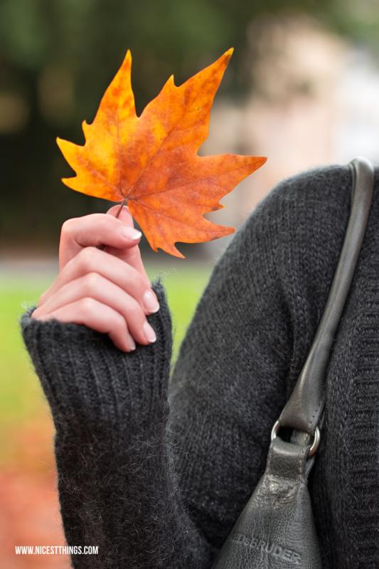 Herbstshooting im Park Herbst Herbstblätter Portraitshooting #herbstshooting #portraitshooting #herbstblätter #herbst #fotografie #shooting
