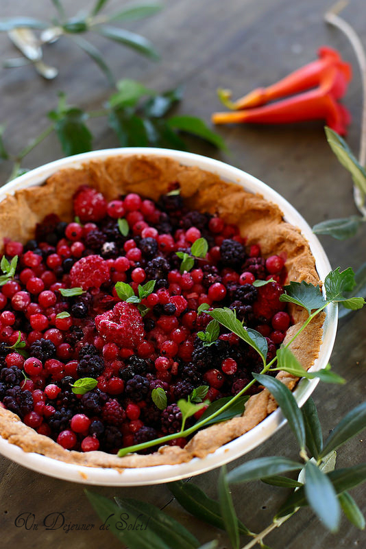 Tarte aux fruits rouges avec pâte à la farine d'épeautre