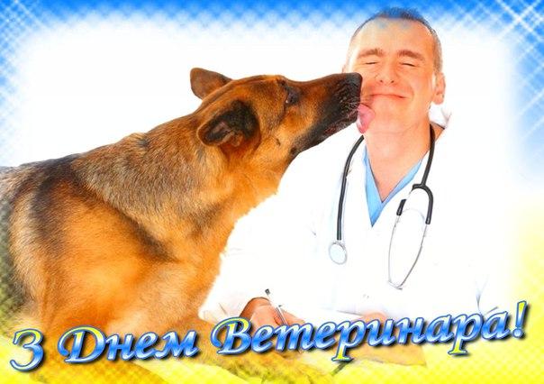 Поздравления с Днем ветеринара