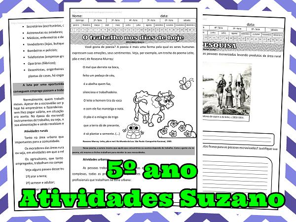 história-pesquisa-atividades-suzano