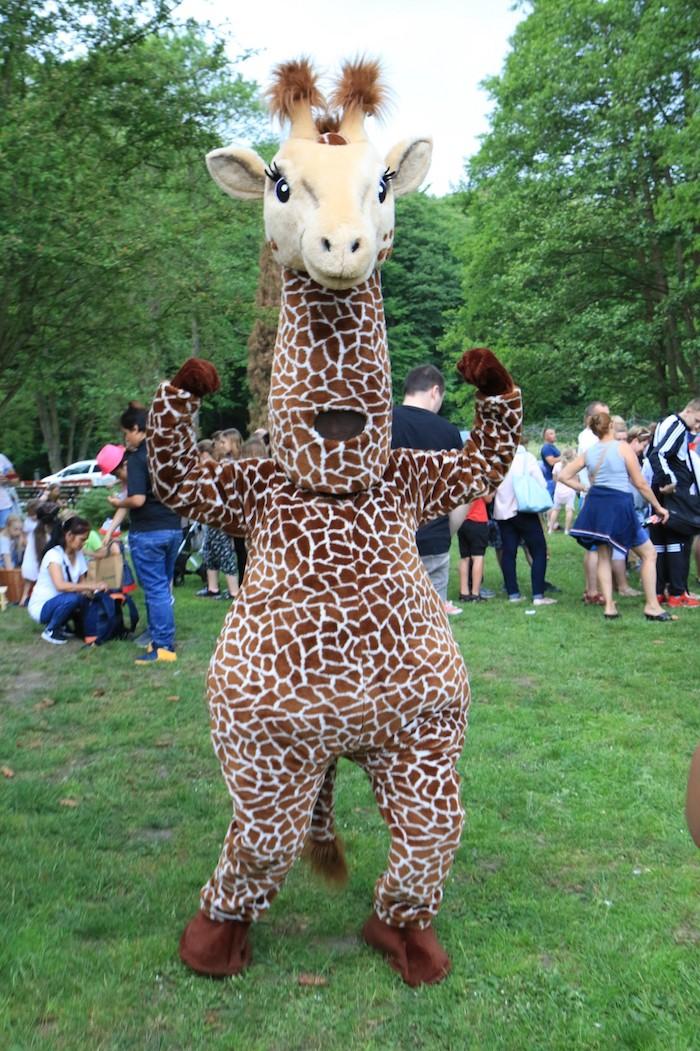 Gdańsk ogród zoologiczny, Polska latem, zoo, zoo Gdańsk Oliwa, co zobaczyć w Gdańsku, zoo w Gdańsku, największe atrakcje Gdańska, Gdańsk atrakcje dla dzieci