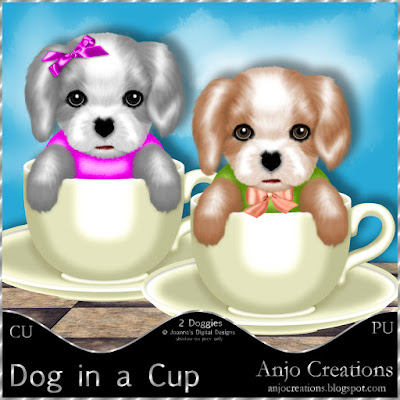 Dog in a Cup CU/PU