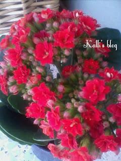 Μενού εβδομάδας 18/06-24/09 Kalli's blog