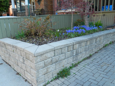 Toronto new garden installation Roncesvalles Village before by Paul Jung Gardening Services