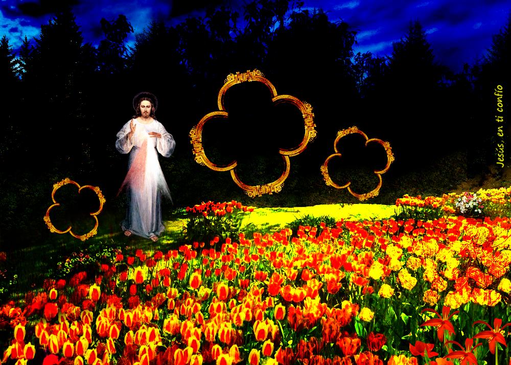 divina misericordia con flores