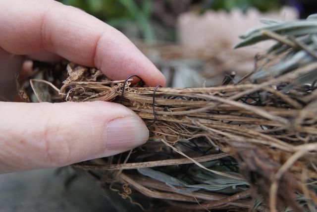 Zweige und Ranken mit Drahtschlaufen befestigen