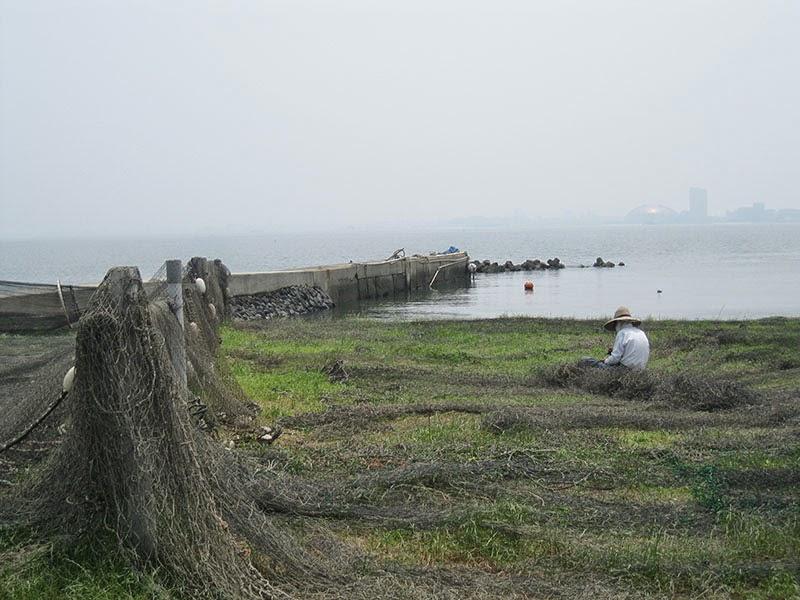 Nokonoshima Island nets, Kyushu, Japan