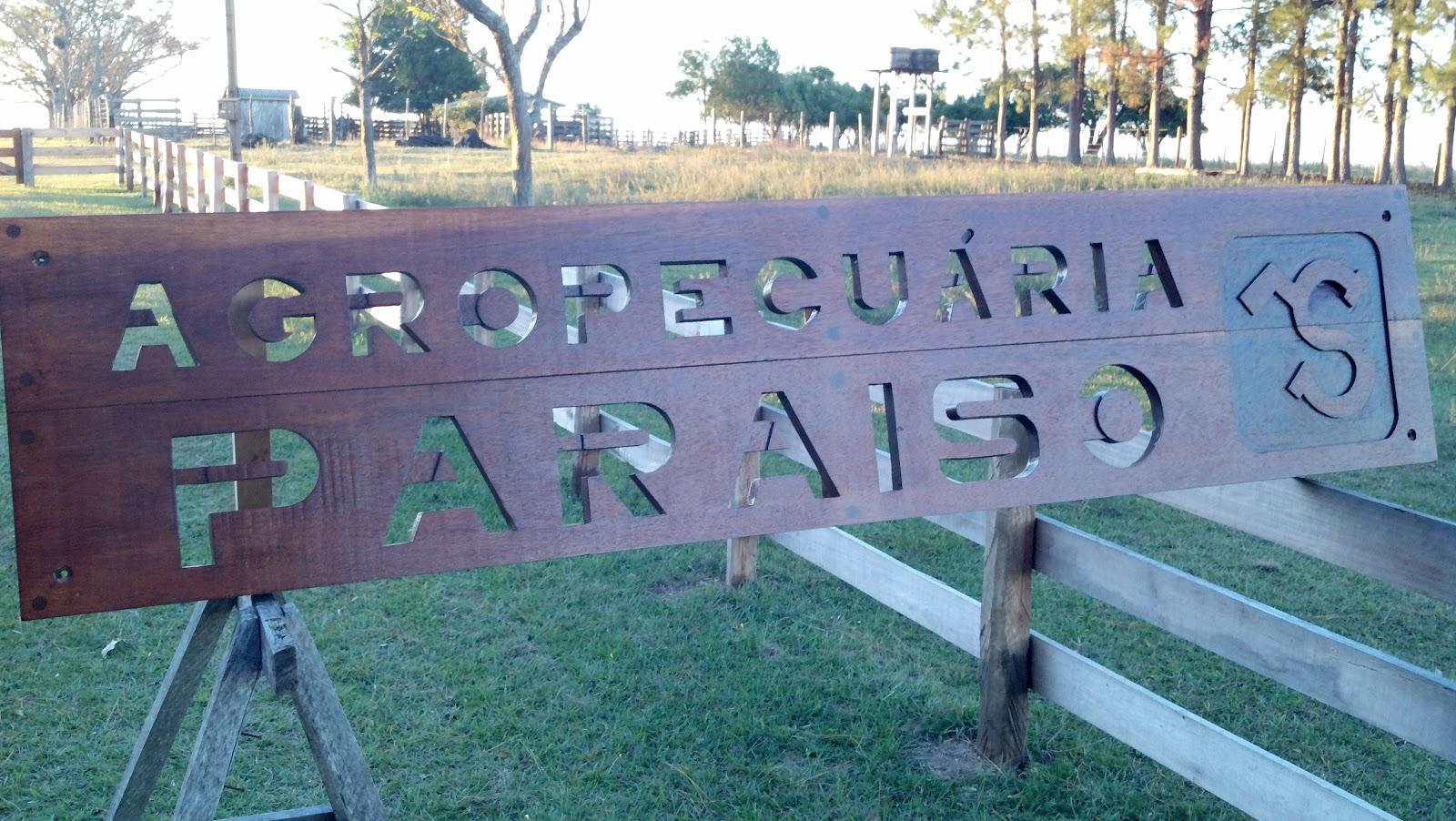 Artes Do Dinho Placa De Fazenda Agropecu 225 Ria Para 237 So