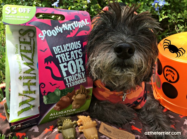 WHIMZEES dental treats SpookyNatural promotion sold exclusively at Petco