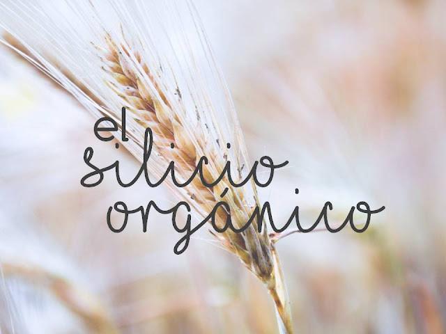 EL SILICIO ORGÁNICO